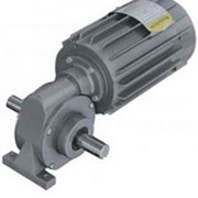 AC Gearmotor 3Ph Right Angle
