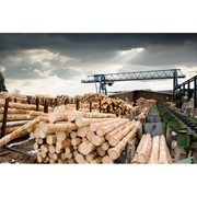 Engineered Plastic Products | Chanex® Timber Industry Products