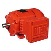 WEG Electric Motor | IEC Hazardous Area Application