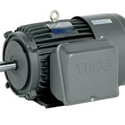 Single Phase Induction Motor | TECO | Squirrel Cage
