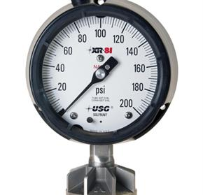 All-Welded Process Gauge and Diaphragm Seal - XR-Series by Ross Brown Sales