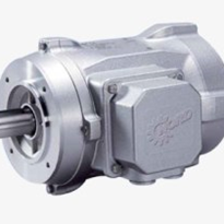 Smooth Surface Motors | IP66