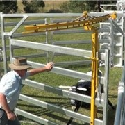 Safety Gate | Protecta-Gate