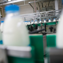 New Hub hopes to bolster dairy innovation