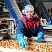 Selecting the right safety gloves in the food industry