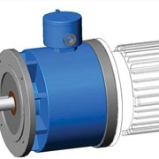 Modular Explosion Proof Brakes | Electric Motors