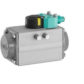 Pneumatic Quarter Turn Actuators SC Series