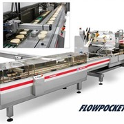 Feeding & Food Conveyor Systems | FlowPocket