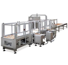 Food Conveyor System