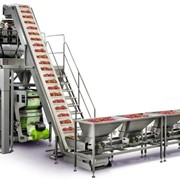 Combination VFFS & Multi-Head Weigher (compact)