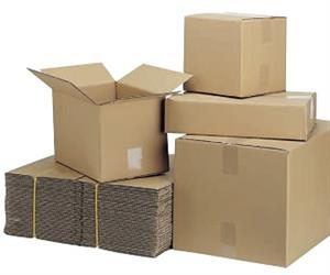 Signet Shipping Cartons