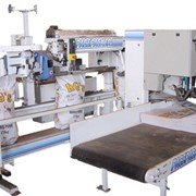 Fully Automated Bagging Lines