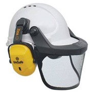 Hard Hat with Visor