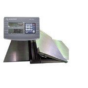 Floor Beam & Pallet Weighing Scales | IH1949-SS