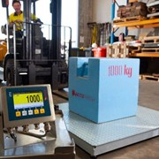 Weighing Equipment -A500 Pallet Scale