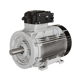 Low Voltage IEC Motors for Hazardous Area
