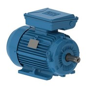 W22 Single Phase Electric Motor