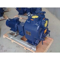 Wastewater Pump | Prime Hog X4