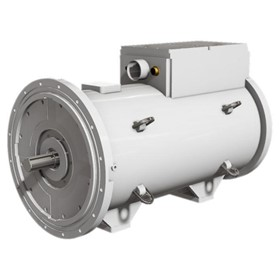 Medium / High Voltage Motors - Mining Motor