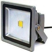 LED Floodlight | Koloona