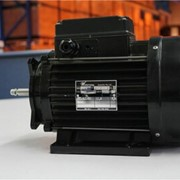 Conon Electric Motor | Waterway/Aqua-Flo's pump