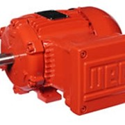 WEG Explosion Proof Motors