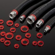 Hose Collar Supplier for Hydraulic Hose - Tails