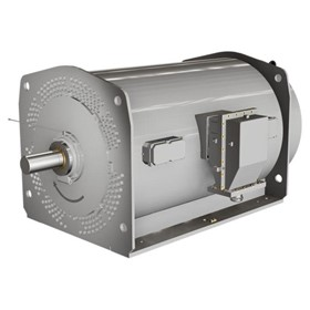 Medium / High Voltage Motors - Tube Cooled Motors
