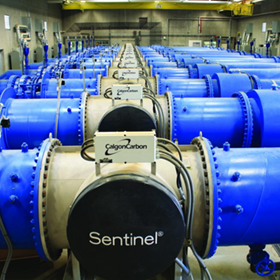 Sentinel | Water Treatment Systems | Calgon Carbon UV Reactors