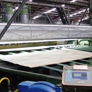 IP Horizon Board and Veneer Inspection system