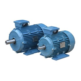 3 Phase Aluminium Electric Motor