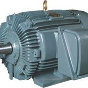 Electric Motors | Cast Iron 3PH (three-phase)