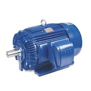 TECO MaxE3 High Efficiency Electric Motor