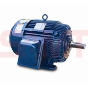 NEMA Standard Motor - Low Voltage (LV)