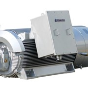 IEC Standard Electric Motors - High Voltage (HV)