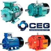 CEG Electric Motors and Pumps