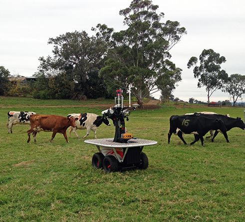 Professor Salah Sukkarieh says robots like 'Shrimp' can increase efficiency and yield by performing many of the manual tasks of farming. (Image: Sydney University)