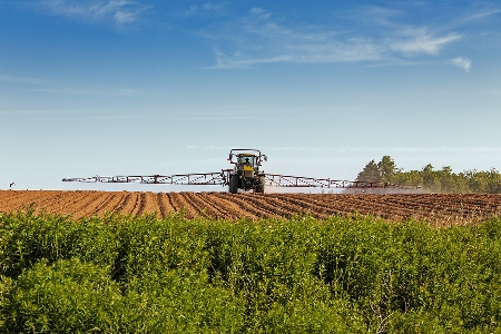 "AUSVEG plays a ""vital role"" for potato producers."