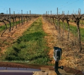 A prototype model of the robotic car being tested at a winery in Orange, NSW. (Image: UNSW)