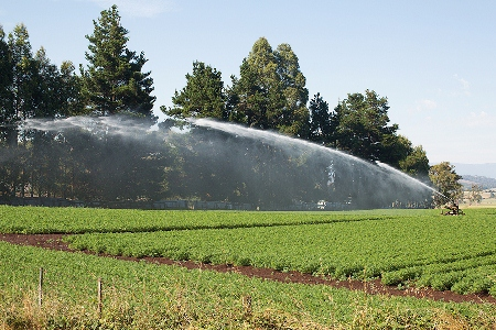 Turning saline groundwater into fresh water could help agricultural irrigation.