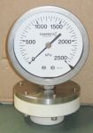Glass Filled PTFE Diaphragm Seal mounted on a Tempress Pressure gauge with a PTFE Membrane.