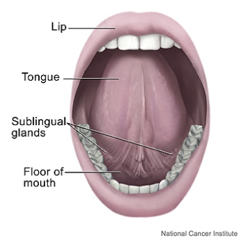 """The key challenge to reduce the mortality and morbidity of oral cancer is to develop strategies to identify and detect the disease when it is at a very early stage."""