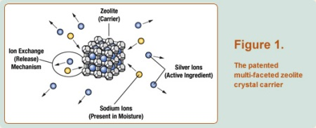 Figure 1. The patended multi-faceted zeolite crystal carrier