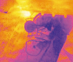 Thermal imager of a bicycle being fed into the feeder
