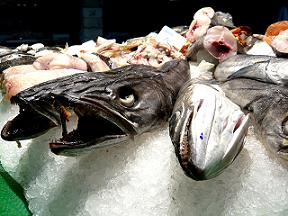 Safety concerns for fish wholesalers are under discussion.