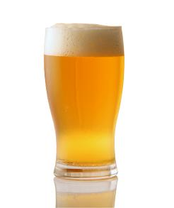 Study finds beer is a rich source of silicon, may help prevent osteoporosis.