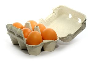 16 per cent of consumers surveyed choose free range eggs.