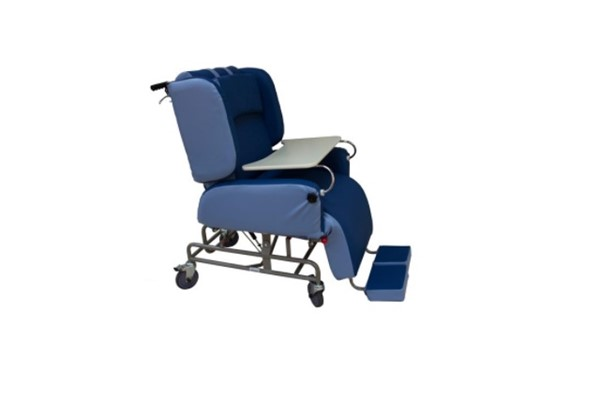 Stupendous Day Bed Lift Chair And Recliner Days Comfort Chair Andrewgaddart Wooden Chair Designs For Living Room Andrewgaddartcom