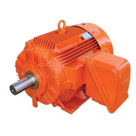 Low Voltage 3PH Electric Motors - MAXe3 Mining