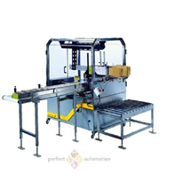 Econopacker Case Packer